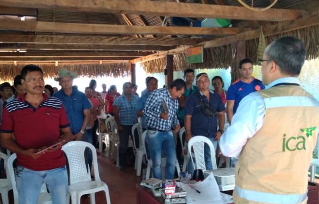 Capacitación a apicultores en Arauca