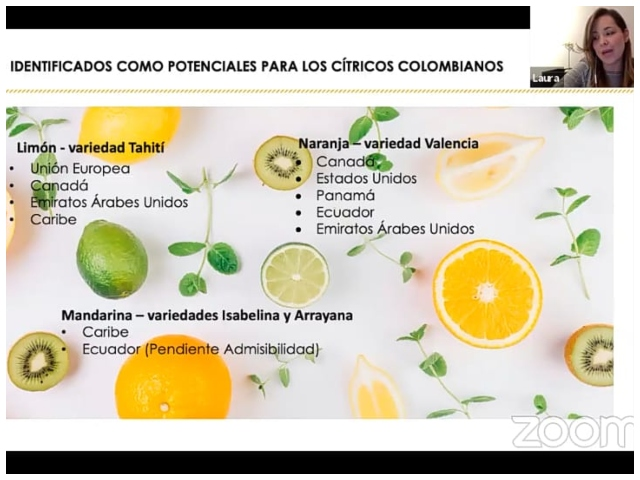 Foto-ICA-Citricaldas-Web-2.jpg