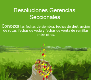Resoluciones Seccionales